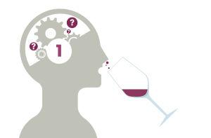 De la sensation à la perception des couleurs et arômes du vin