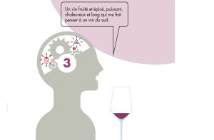 jugement qualitatif du vin